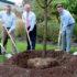 Wyndham Worldwide Celebrates One Million Trees Milestone