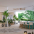 Margaritaville Beach Resort Grand Cayman Reveals Restaurants