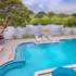 Sheraton Miami Airport Hotel Reveals Revamp