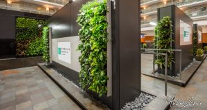 "Embassy Suites By Hilton Chicago Downtown Magnificent Mile Opens ""Sky Garden"""