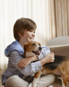 Sheraton Milwaukee Brookfield Hotel - pet friendly