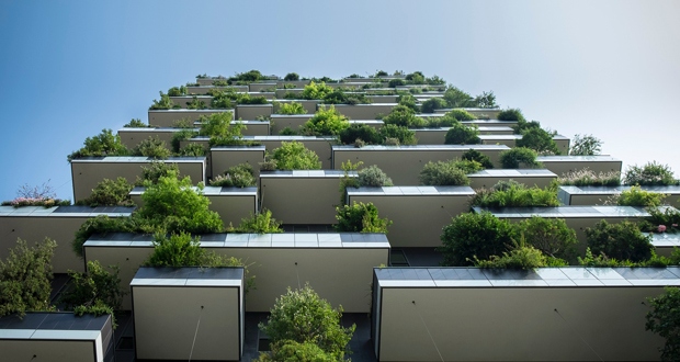 biophilic design -- green