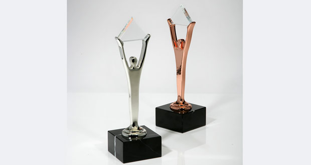 Silver and bronze Stevie Awards from the American Business Awards