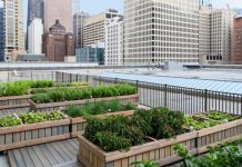 Chicago Marriott Magnificent Mile rooftop