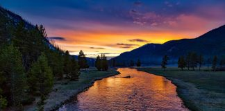 Yellowstone National Park - National Parks