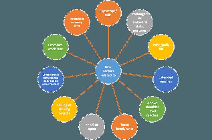 MSD Risk Factors