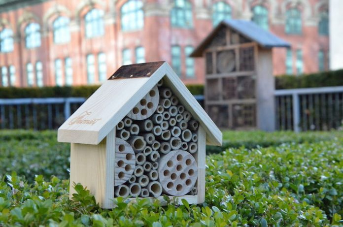A bee hotel at Vancouver's Fairmont Waterfront (Photo courtesy of Fairmont Hotels & Resorts)