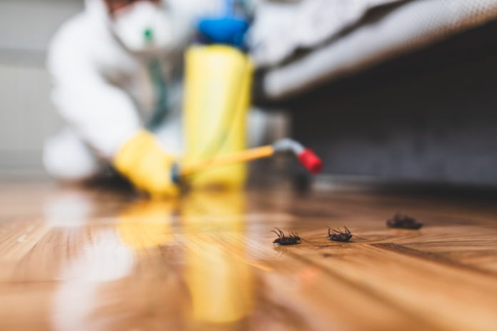 Exterminator in work wear spraying pesticide with sprayer. - Insect Growth Regulators Market